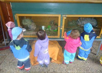 Unsere Hasen Überbetriebliche Kindertagesstätte Lörrach